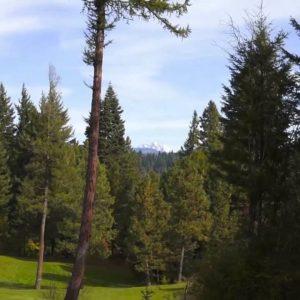 Sun Country Golf Course!